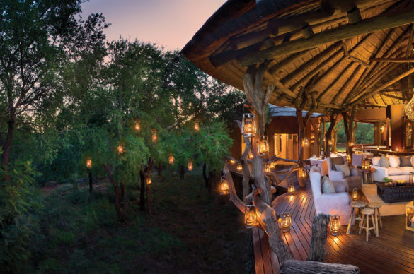 Five Reasons to Visit Madikwe Game Reserve
